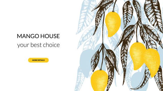 Stock vector illustration with mango fruit banner. Hand drawn fruit illustration with mango tree. Template for ads, website, blog post cafe, restaurant, hotel, market, mango home