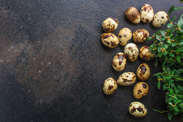 quail eggs (tasty fresh, vitamins) menu concept. food background. top view. copy space