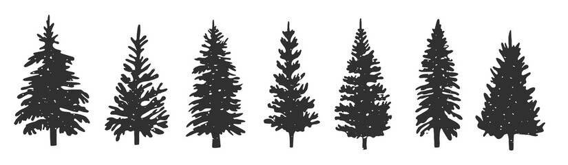 silhouettes of spruce. Vector graphics. hand drawing. Eps