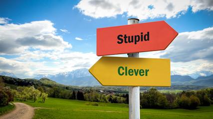 Street Sign Clever versus Stupid