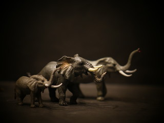 Photo sur Aluminium Elephant isolated elephants toy figurine