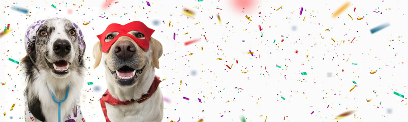 Spoed Fotobehang Carnaval Banner two dogs celebrating carnival, halloween, new year dressed as a veterinarian and hero with red mask, cape costume. Isolated on white background with confetti falling