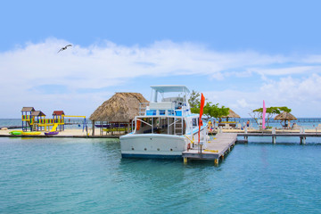 Snorkel and swim tour on Belize, Caribbean
