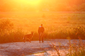 Dog with owner walk on the background of brightly lit terrain at sunset