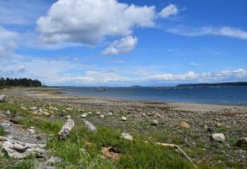 coastal landscape near Union Bay, Vancouver Island BC Canada