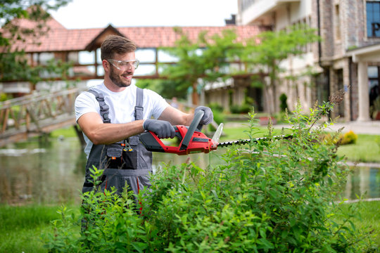 Gardener maintaining bushes with electric saw