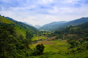 Tuinposter Bergen Beautiful lush green highlands of Northern Thailand South East Asia
