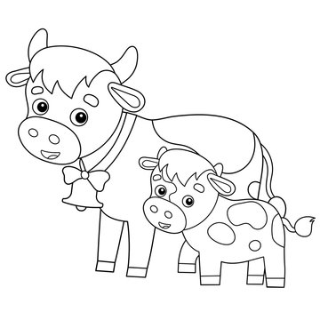 Coloring Page Outline of cartoon cow with calf. Farm animals. Coloring book for kids.