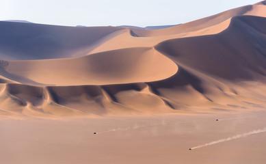 Keuken foto achterwand Zalm the greatness of sand dunes in lut desert