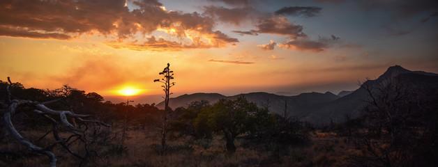 Fototapeten Dunkelbraun sunset at Big Bend National Park