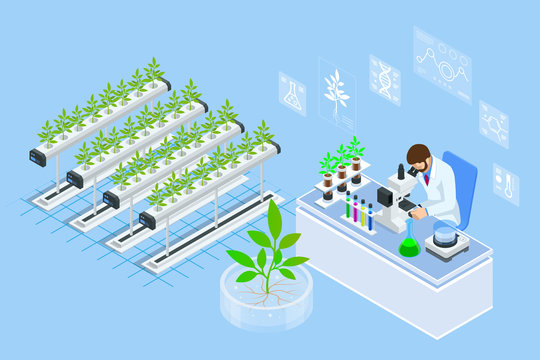 Isometric concept of laboratory exploring new methods of plant breeding and agricultural genetics. Vegetable hydroponic system, agriculture in the greenhouse organic for health food