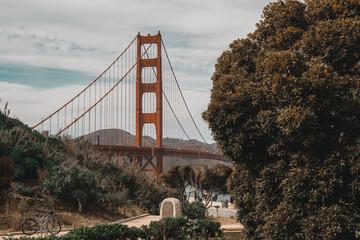 Golden Gate Nature