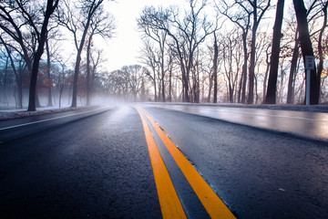 Wet winter road on foggy morning with yellow dividing line and bare trees.