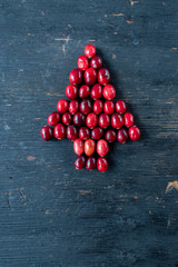 red cranberries shaped into Christmas tree border with copy space