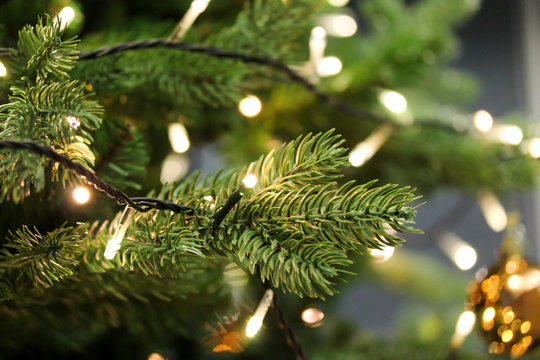 Christmas tree branches close up decorated with garland lights. Festive holiday background with artificial fir tree. Blurred backdrop