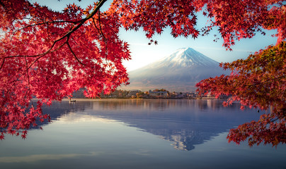 Foto auf Acrylglas Violett rot Colorful Autumn Season and Mountain Fuji with morning fog and red leaves at lake Kawaguchiko is one of the best places in Japan