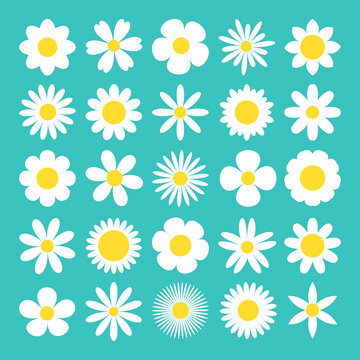 Camomile big set. White daisy chamomile icon. Cute round flower plant nature collection. Love card symbol. Growing concept. Decoration element. Flat design. Green background. Isolated.