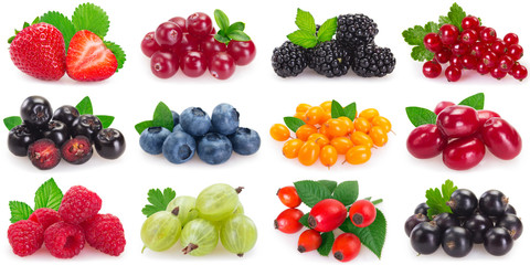 Collection of fresh berries on white background Fototapete