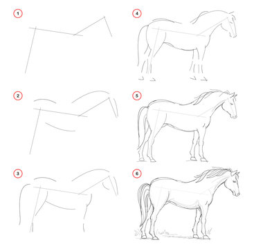 How to draw from nature sketch of standing horse. Creation step by step pencil drawing. Educational page for artists. School textbook for developing artistic skills. Hand-drawn vector image.