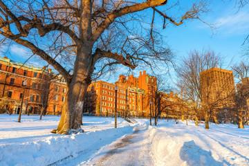 Boston common at winter sunset