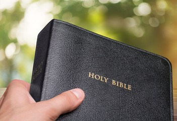 Wall Mural - Hand holds black holy bible on bokeh background