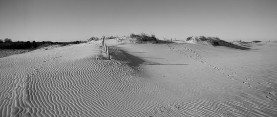 Black and white view of small sand dunes