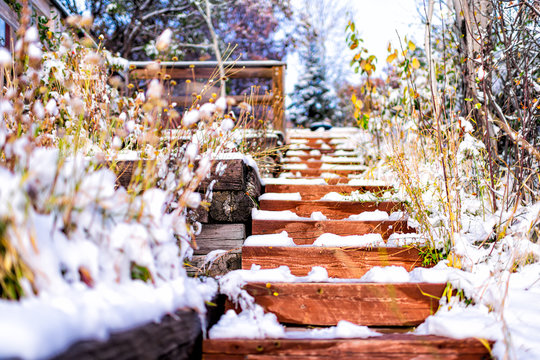 Plant decorations landscaping covered in winter snow terraced along steep wooden steps up with nobody architecture of garden backyard of house in Colorado