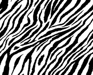 Full seamless wallpaper for zebra and tiger stripes animal skin pattern. Black and white design for textile fabric printing. Fashionable and home design fit.