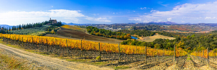 Traditional countryside and landscape of beautiful Tuscany. Castles and vineyards. Italy
