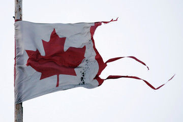 A tattered Canadian flag flutters in a sub-zero wind in Toronto