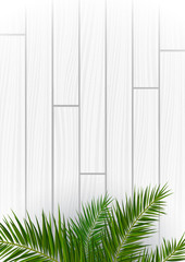 Wall Mural - White Wooden background with exotic palm leaves.