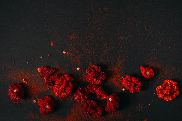 Red spicy dry carolina reaper. Dark food photography. Copy space. Wall mural