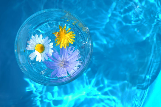 abstract background with flowers in water