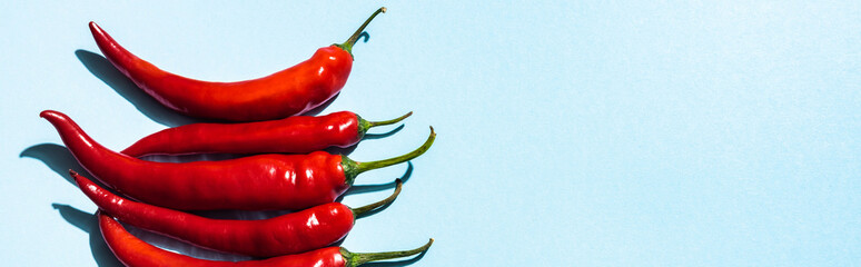Canvas Prints Hot chili peppers Top view of organic chili peppers on blue background with copy space, panoramic shot