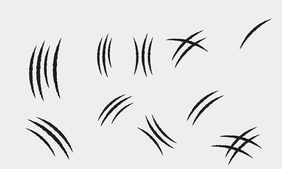 set of animal claw