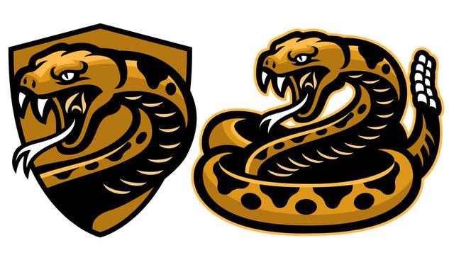 rattle snake mascot in set