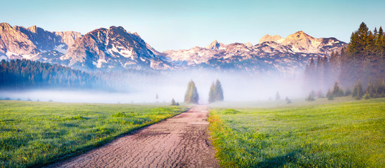 Photo sur Aluminium Europe Méditérranéenne Soft fog coming down from the mountains surrounds the sunny valley. Panoramic summer scene of Durmitor Nacionalni Park, Montenegro, Zabljak town location. Traveling concept background.