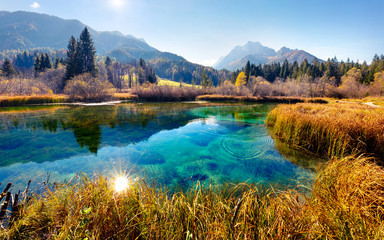 Stores photo Bleu ciel Picturesque autumn scene of Julian Alps with Kranjska gora peak on background. Wonderful morning view of Zelenci nature reserve, Slovenia, Europe. Beauty of nature concept background.