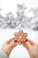 Ginger bread cookie at Christmas time