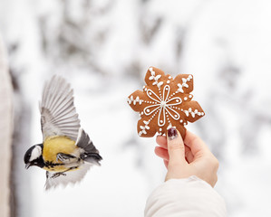 Ginger bread and little bird