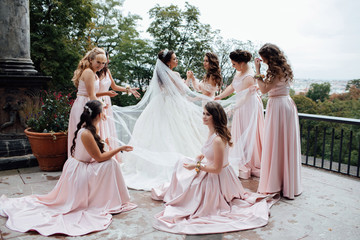 Beautiful and elegant bride with bridesmaids. Bridesmaids, along with the bride at the wedding posing. Happy girls at their best friend's wedding. Girlfriends admire the bride's veil