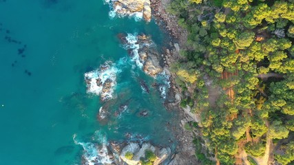 Fototapete - Cliffs with green forest at the sea