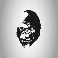 gorillas, ape, gorilla gorilla, lowland gorilla, apes, wild life, monkey, silverback mountain gorilla, safari, gorilla, silverback