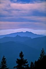 Aluminium Prints Fog envelopes Castle Crags Wilderness Area, California