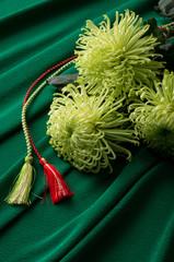 菊と組紐と縮緬布の背景