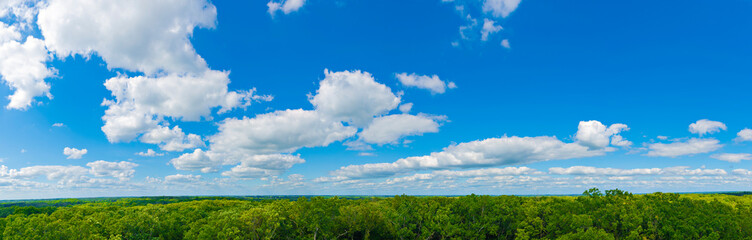 Sibley State Park  Mount Tom Trail Blue sky panorama with clouds over tops of green trees Fotomurales