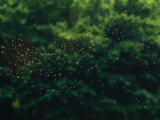 Emerald greenery forest foliage vector background
