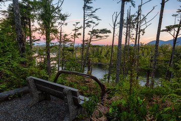 Fototapete - Bench in the forest with a beautiful view on the Ocean Coast during a vibrant colorful sunrise. Wild Pacifc Trail, Ucluelet, Vancouver Island, BC, Canada.