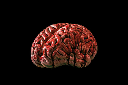 Bloody brain isolated on black background with clipping path