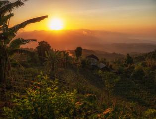 Sunset over Jatiluwih rice terrace, Bali